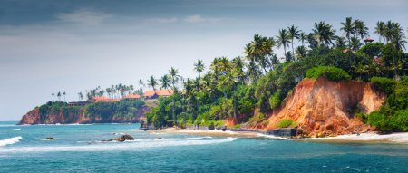 Photo for Coast with palm trees at sunny day near the town of Weligama, Sri Lanka - Royalty Free Image