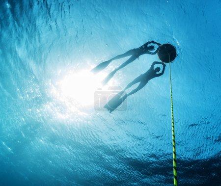 Freedivers in the sea
