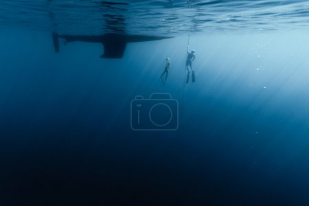 Freedivers in the water