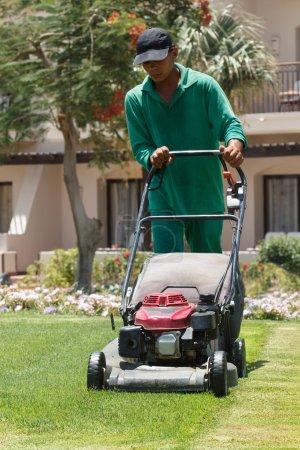 Male gardener cutting grass with lawn mower