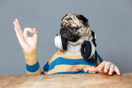 Man with pug dog head in headphones showing ok gesture