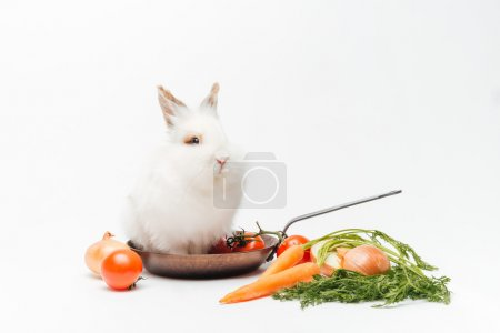 Rabbit inside a frying pan and vegetables