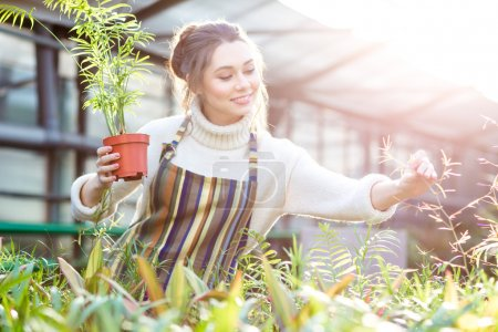 Smiling female gardener in taking care of plants and flowers