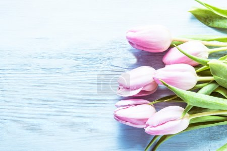 Photo for Pink pastel tulips on wooden board, lay flat from above - Royalty Free Image