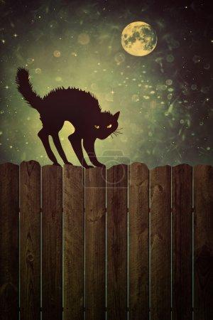 Photo pour Chat noir sur une vieille clôture en bois la nuit avec un look vintage - image libre de droit