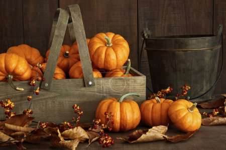 Photo for Small pumpkins in wooden box with leaves and berries - Royalty Free Image