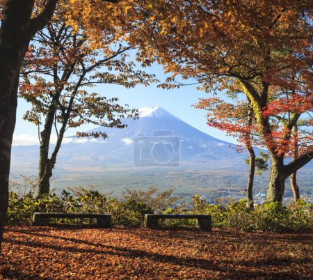 The fall season of Mt. Fuji in Japan with nice yellow color