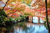 """Постер, картина, фотообои """"Daigo-ji — буддийский храм в Фусими ку Сингон"""""""