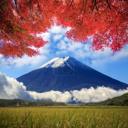 image of fuji mountain