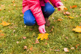 close up of little girl collecting autumn leaves