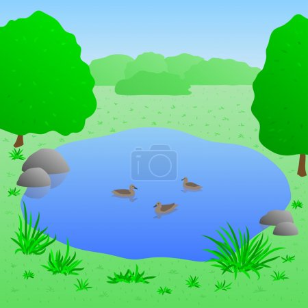 Illustration for Beautiful lake with ducks, summer landscape, vector illustration - Royalty Free Image