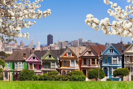 Photo pour Dames peintes et horizon de San Francisco avec arbre de fleurs de cerisier de printemps - image libre de droit
