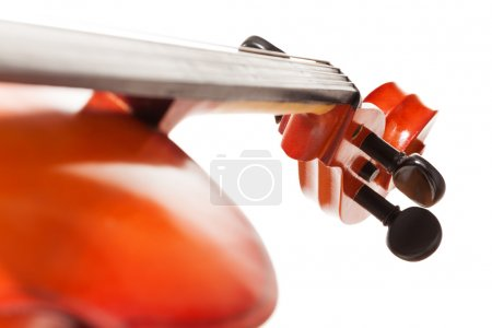 Tuning pegs view of cello