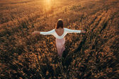 """Постер, картина, фотообои """"Красивая брюнетка дама в пшеничном поле на закате"""""""