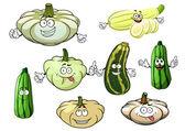 Zucchini, marrow and squash vegetables
