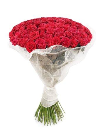 Photo pour Un grand bouquet de 101 roses rouges isolées sur blanc - image libre de droit