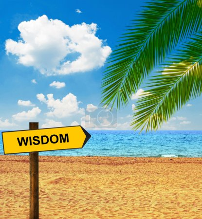 Tropical beach and direction board saying WISDOM