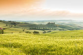 Landscape of Tuscany, hills and meadows, Toscana - Italy