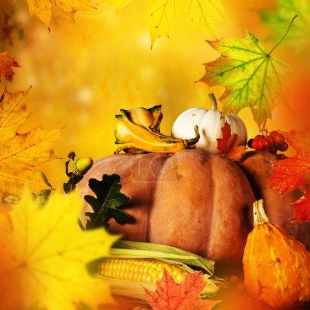 Photo pour Beau fond automne feuilles d'érable - image libre de droit
