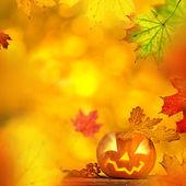 Strašidelné jack o lantern halloween pozadí