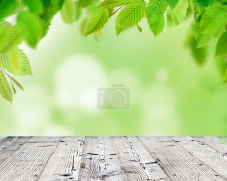 Empty wooden deck table with green leaves