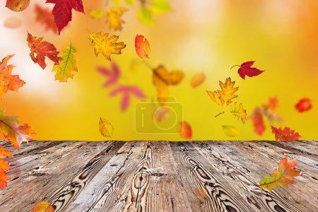Photo pour Fond automnal coloré avec feuilles, gros plan - image libre de droit