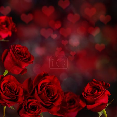 Valentine red roses Background.