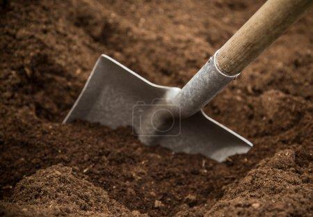 Photo pour Pelle dans le sol, gros plan . - image libre de droit