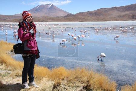 Photo pour Joyeux jeune touriste au lac de montagne avec flamants roses dans les Andes. Laguna Hedionda, Bolivie, Amérique du Sud . - image libre de droit