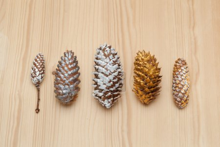 Christmas holiday pine cones painted colors
