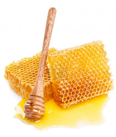 Honeycomb and honey dipper. High-quality picture.
