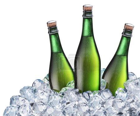 Bottles of beer in the ice.