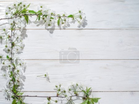Blooming cherry twig over old wooden table.