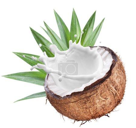 Coconut with milk splash inside.