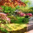 Nature background panorama in Japanese park...