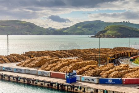 Timber yard - Port Chalmers, New Zealand with timber export