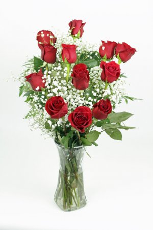 Photo for One red roses flower arrangement with its leaves and white babies breath blossoms in a clear glass vase. A dozen fresh cut red roses with babys breath in a glass vase - Royalty Free Image