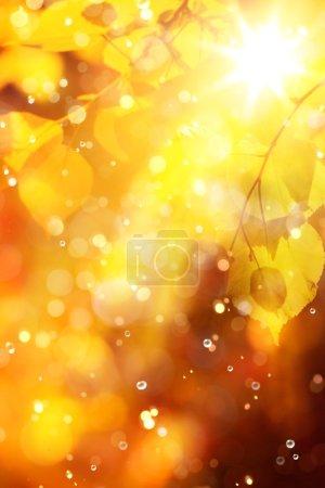 ID de imagen B52942587