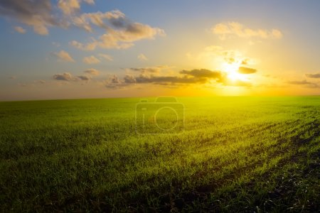 Photo pour Champ de ressort, lever de soleil et ciel bleu - image libre de droit
