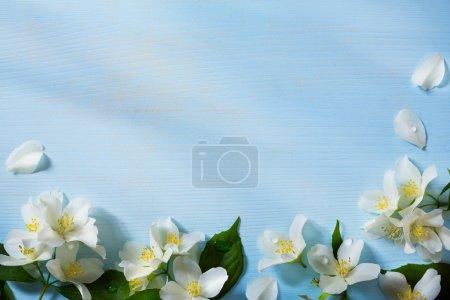 ID de imagen B74099113