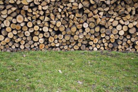 Photo pour Vue rapprochée de la pile de bois - image libre de droit
