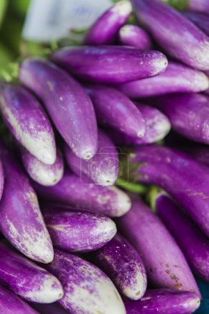 Eggplants on the market in Mumbai