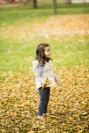 Girl at the autumn park