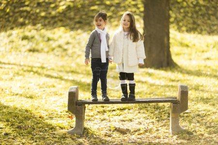 Photo pour Deux petites filles au parc d'automne - image libre de droit