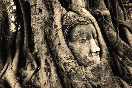 Buddha figure    in Ayutthaya