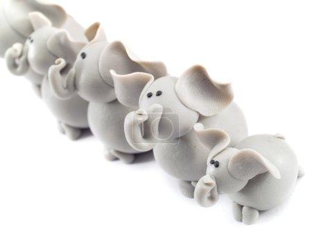 Big elephant family