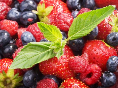Photo for Tasty fresh Berries, close up - Royalty Free Image