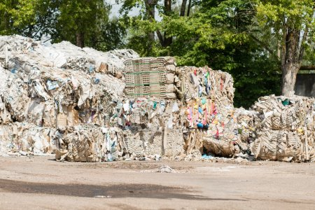 collection of waste paper, recycling waste