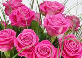 """Постер, картина, фотообои """"Букет из роз в розовый пакет"""""""