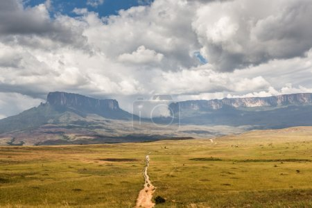 Track to Mount Roraima - Venezuela, South America...
